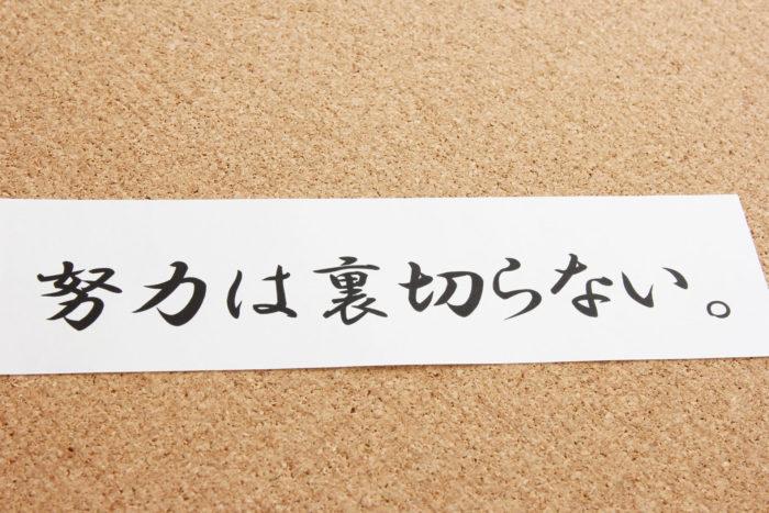 ブログ500記事達成